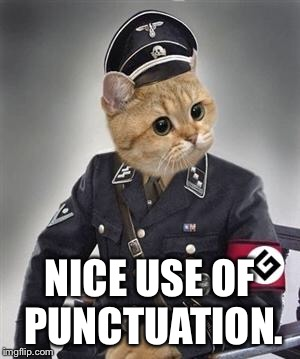 Grammar Nazi Cat | NICE USE OF PUNCTUATION. | image tagged in grammar nazi cat | made w/ Imgflip meme maker
