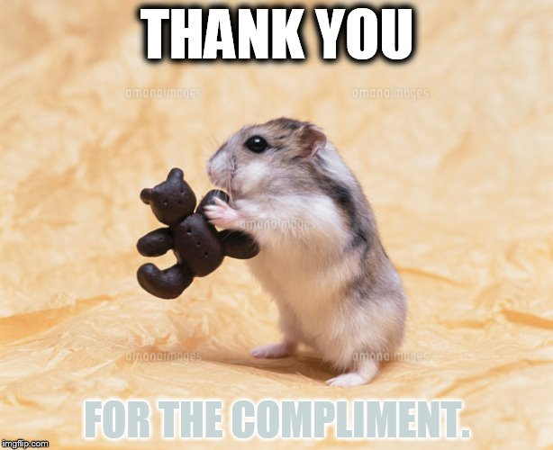 THANK YOU FOR THE COMPLIMENT. | made w/ Imgflip meme maker