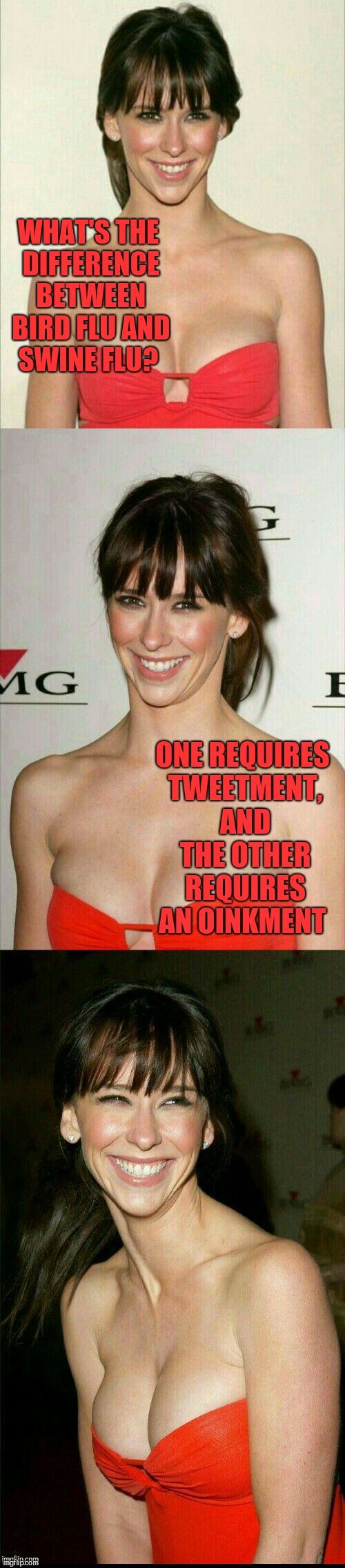 Jennifer Love Hewitt joke template  | WHAT'S THE DIFFERENCE BETWEEN BIRD FLU AND SWINE FLU? ONE REQUIRES TWEETMENT, AND THE OTHER REQUIRES AN OINKMENT | image tagged in jennifer love hewitt joke template,jbmemegeek,jennifer love hewitt,bad puns | made w/ Imgflip meme maker