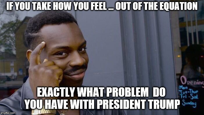 Roll Safe Think About It Meme | IF YOU TAKE HOW YOU FEEL ... OUT OF THE EQUATION EXACTLY WHAT PROBLEM  DO YOU HAVE WITH PRESIDENT TRUMP | image tagged in memes,roll safe think about it | made w/ Imgflip meme maker
