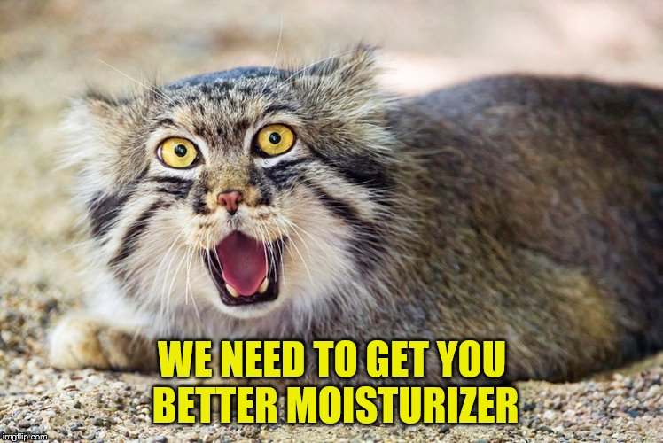 WE NEED TO GET YOU BETTER MOISTURIZER | made w/ Imgflip meme maker