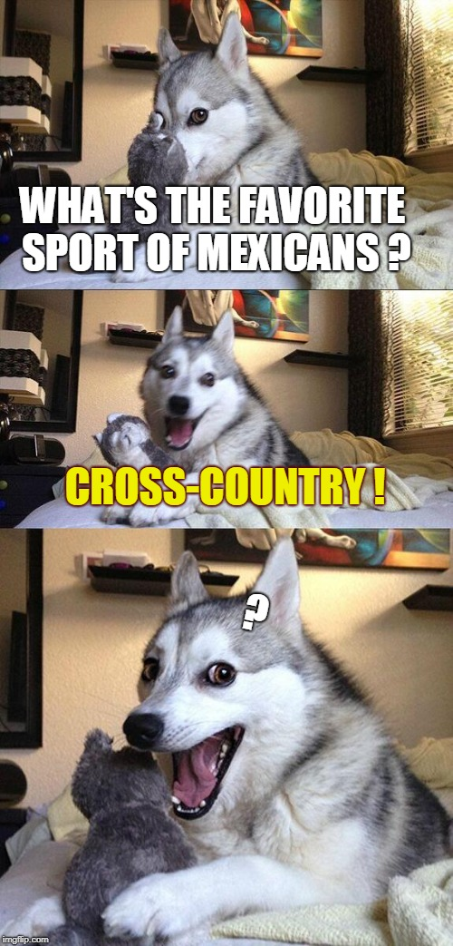 Bad Pun Dog Meme | WHAT'S THE FAVORITE SPORT OF MEXICANS ? CROSS-COUNTRY ! ? | image tagged in memes,bad pun dog | made w/ Imgflip meme maker