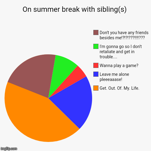 On summer break with sibling(s) | Get. Out. Of. My. Life., Leave me alone pleeeaaase!, Wanna play a game?, I'm gonna go so I don't retaliate | image tagged in funny,pie charts | made w/ Imgflip pie chart maker