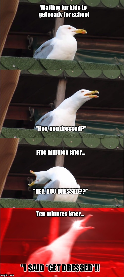 "Inhaling Seagull Meme | Waiting for kids to get ready for school ""Hey, you dressed?"" Five minutes later... ""HEY, YOU DRESSED??"" Ten minutes later... ""I SAID *GET DR 