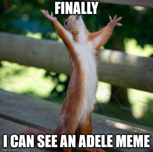 finally | FINALLY I CAN SEE AN ADELE MEME | image tagged in finally | made w/ Imgflip meme maker