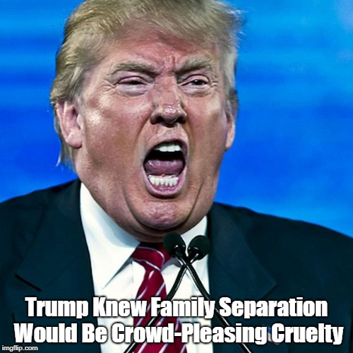 Trump Knew Family Separation Would Be Crowd-Pleasing Cruelty | Trump Knew Family Separation Would Be Crowd-Pleasing Cruelty | image tagged in cruel trump,deplorable donald,despicable donald,devious donald,detestable donald,dishonorable donald | made w/ Imgflip meme maker