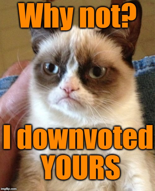 Grumpy Cat Meme | Why not? I downvoted YOURS | image tagged in memes,grumpy cat | made w/ Imgflip meme maker