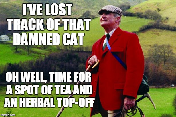 I'VE LOST TRACK OF THAT DAMNED CAT OH WELL, TIME FOR A SPOT OF TEA AND AN HERBAL TOP-OFF | made w/ Imgflip meme maker