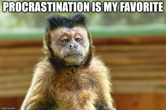PROCRASTINATION IS MY FAVORITE | made w/ Imgflip meme maker