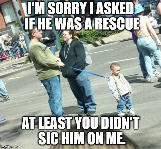 It is hard to tell what's a pet and what's family. | I'M SORRY I ASKED IF HE WAS A RESCUE AT LEAST YOU DIDN'T SIC HIM ON ME. | image tagged in memes,child on leash | made w/ Imgflip meme maker