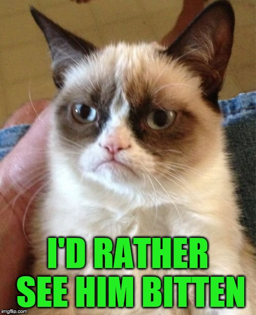 Grumpy Cat Meme | I'D RATHER SEE HIM BITTEN | image tagged in memes,grumpy cat | made w/ Imgflip meme maker