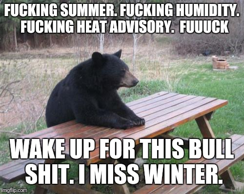 Bad Luck Bear Meme | F**KING SUMMER. F**KING HUMIDITY.  F**KING HEAT ADVISORY.  FUUUCK WAKE UP FOR THIS BULL SHIT. I MISS WINTER. | image tagged in memes,bad luck bear | made w/ Imgflip meme maker