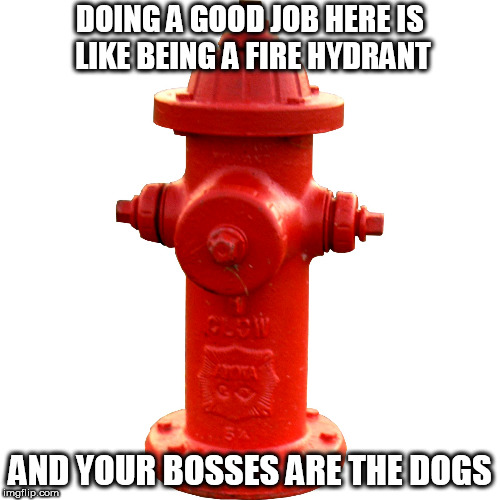DOING A GOOD JOB HERE IS LIKE BEING A FIRE HYDRANT AND YOUR BOSSES ARE THE DOGS | image tagged in fire hydrant | made w/ Imgflip meme maker
