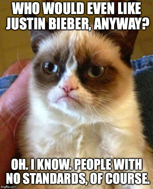 Grumpy Cat Meme | WHO WOULD EVEN LIKE JUSTIN BIEBER, ANYWAY? OH. I KNOW. PEOPLE WITH NO STANDARDS, OF COURSE. | image tagged in memes,grumpy cat | made w/ Imgflip meme maker