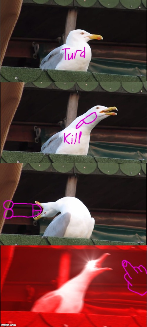 Inhaling Seagull Meme | image tagged in inhaling seagull,turds,kill,dicks,fuck you,middle finger | made w/ Imgflip meme maker