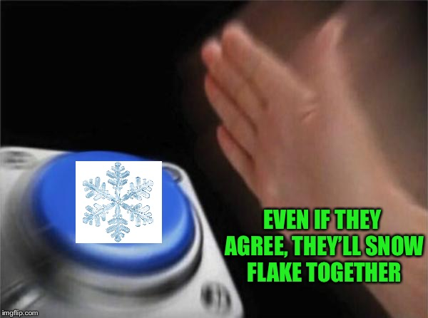 The overly worked liberal karate chop | EVEN IF THEY AGREE, THEY'LL SNOW FLAKE TOGETHER | image tagged in memes,blank nut button | made w/ Imgflip meme maker