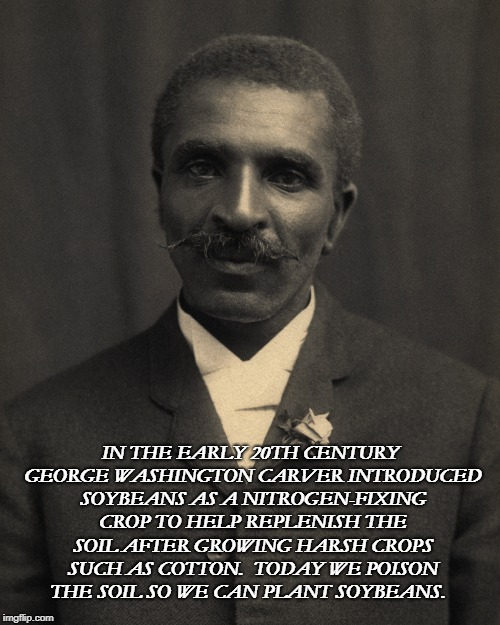 Soy Perturbado | IN THE EARLY 20TH CENTURY GEORGE WASHINGTON CARVER INTRODUCED SOYBEANS AS A NITROGEN-FIXING CROP TO HELP REPLENISH THE SOIL AFTER GROWING HA | image tagged in irony | made w/ Imgflip meme maker
