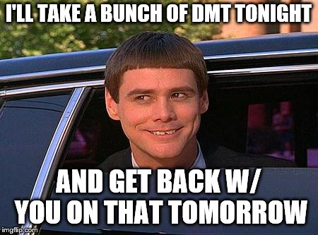 jim carrey meme  | I'LL TAKE A BUNCH OF DMT TONIGHT AND GET BACK W/ YOU ON THAT TOMORROW | image tagged in jim carrey meme | made w/ Imgflip meme maker