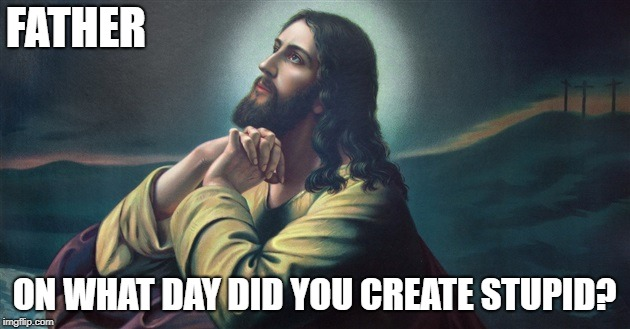 FATHER ON WHAT DAY DID YOU CREATE STUPID? | image tagged in dearfater | made w/ Imgflip meme maker