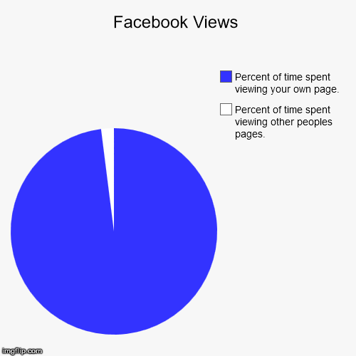 Facebook Views | Percent of time spent viewing other peoples pages., Percent of time spent viewing your own page. | image tagged in funny,pie charts | made w/ Imgflip chart maker