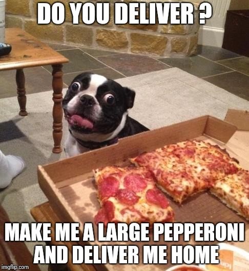 Cheaper than an Uber | DO YOU DELIVER ? MAKE ME A LARGE PEPPERONI AND DELIVER ME HOME | image tagged in hungry pizza dog,taxi,free,scooter,back in my day | made w/ Imgflip meme maker