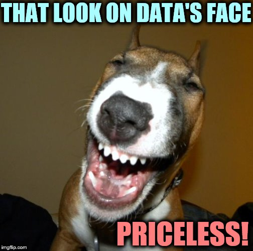 Laughing Dog | THAT LOOK ON DATA'S FACE PRICELESS! | image tagged in laughing dog | made w/ Imgflip meme maker