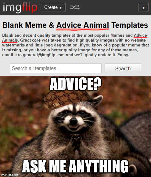 WTH is an Advice Animal? | ADVICE? ASK ME ANYTHING | image tagged in memes,advice,evil plotting raccoon,wtf,stupid | made w/ Imgflip meme maker