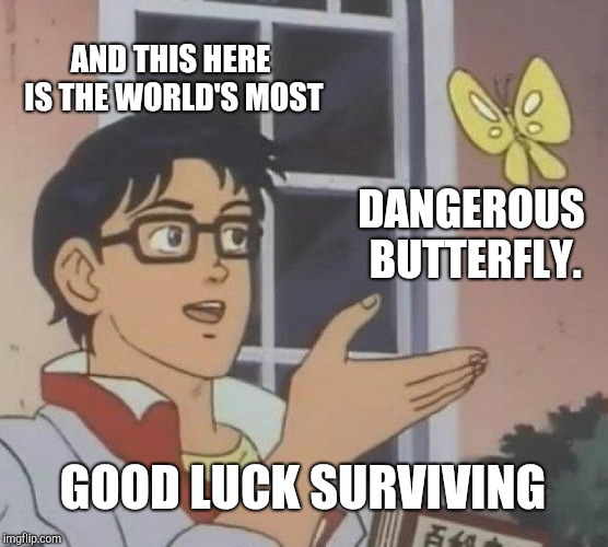 Is This A Pigeon Meme | AND THIS HERE IS THE WORLD'S MOST DANGEROUS BUTTERFLY. GOOD LUCK SURVIVING | image tagged in memes,is this a pigeon | made w/ Imgflip meme maker