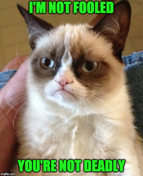 Grumpy Cat Meme | I'M NOT FOOLED YOU'RE NOT DEADLY | image tagged in memes,grumpy cat | made w/ Imgflip meme maker