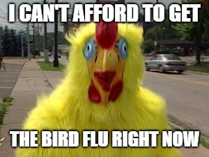 I CAN'T AFFORD TO GET THE BIRD FLU RIGHT NOW | made w/ Imgflip meme maker