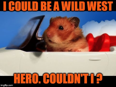 I COULD BE A WILD WEST HERO. COULDN'T I ? | made w/ Imgflip meme maker