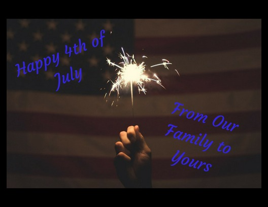 celebrate the 4th | image tagged in 4th of july | made w/ Imgflip meme maker