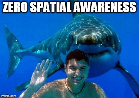 shark | ZERO SPATIAL AWARENESS | image tagged in shark | made w/ Imgflip meme maker