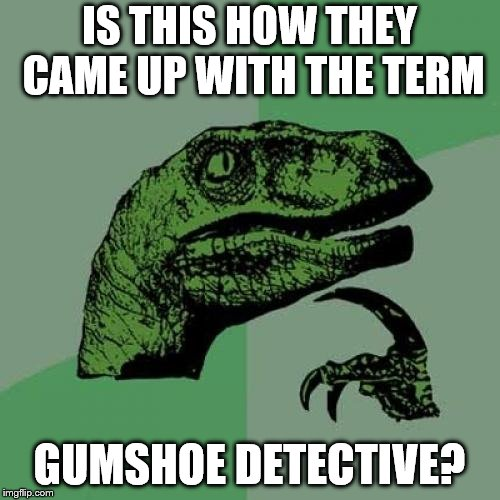 Philosoraptor Meme | IS THIS HOW THEY CAME UP WITH THE TERM GUMSHOE DETECTIVE? | image tagged in memes,philosoraptor | made w/ Imgflip meme maker