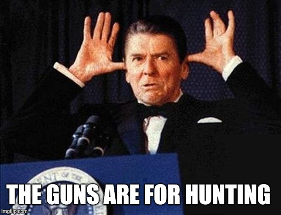 Ronald Regan | THE GUNS ARE FOR HUNTING | image tagged in ronald regan | made w/ Imgflip meme maker