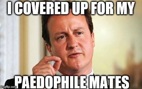 DAVID CAMERON PM | I COVERED UP FOR MY PAEDOPHILE MATES | image tagged in david cameron | made w/ Imgflip meme maker