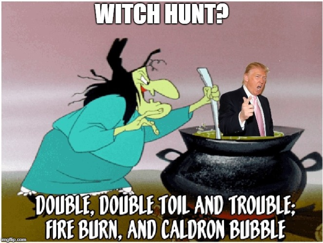 Witch Hunt Donald? | WITCH HUNT? | image tagged in witch hunt,trump | made w/ Imgflip meme maker