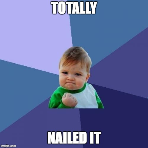 Success Kid Meme | TOTALLY NAILED IT | image tagged in memes,success kid | made w/ Imgflip meme maker