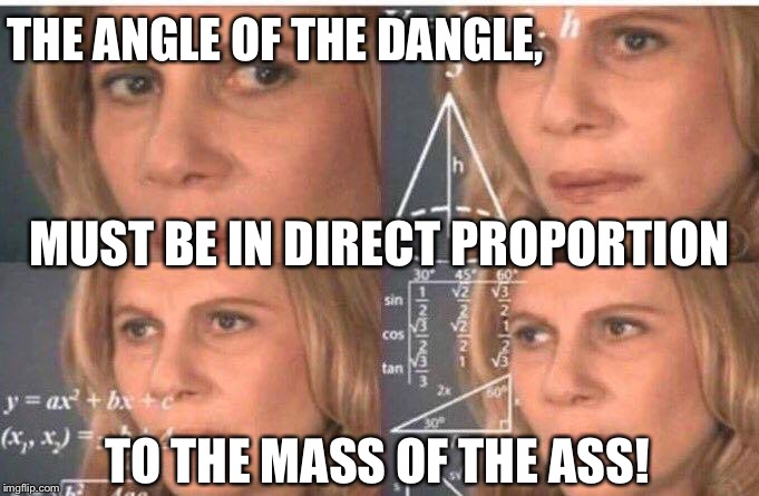Math lady/Confused lady | THE ANGLE OF THE DANGLE, TO THE MASS OF THE ASS! MUST BE IN DIRECT PROPORTION | image tagged in math lady/confused lady | made w/ Imgflip meme maker