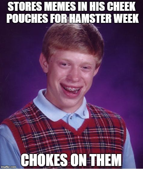 Bad Luck Brian Meme | STORES MEMES IN HIS CHEEK POUCHES FOR HAMSTER WEEK CHOKES ON THEM | image tagged in memes,bad luck brian | made w/ Imgflip meme maker