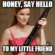 wife with a shotgun | HONEY, SAY HELLO TO MY LITTLE FRIEND | image tagged in wife with a shotgun | made w/ Imgflip meme maker