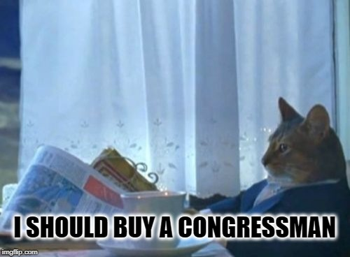 FOR SALE | I SHOULD BUY A CONGRESSMAN | image tagged in memes,i should buy a boat cat,congress,freedom,4th of july,independence day | made w/ Imgflip meme maker
