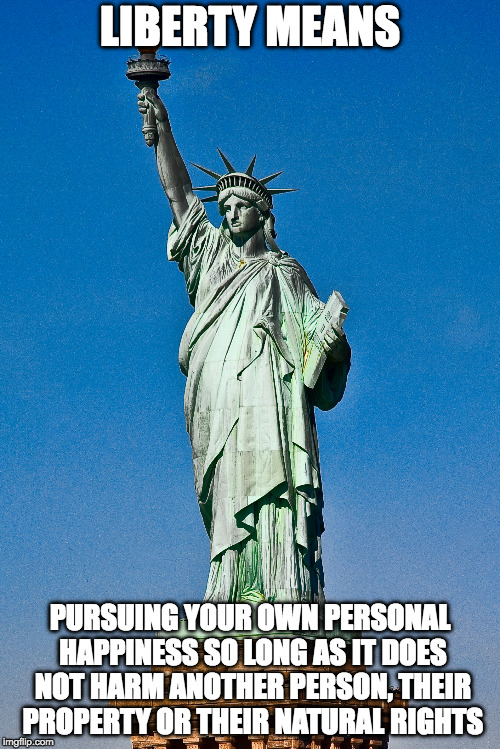 Liberty means | LIBERTY MEANS PURSUING YOUR OWN PERSONAL HAPPINESS SO LONG AS IT DOES NOT HARM ANOTHER PERSON, THEIR PROPERTY OR THEIR NATURAL RIGHTS | image tagged in liberty,pursuit of happiness | made w/ Imgflip meme maker