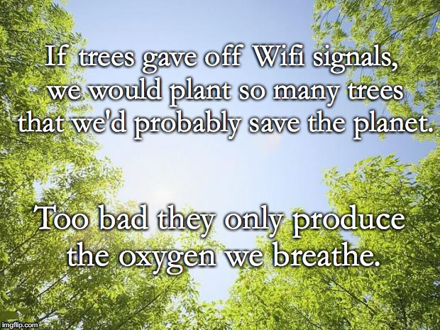 sunshine trees | If trees gave off Wifi signals, we would plant so many trees that we'd probably save the planet. Too bad they only produce the oxygen we bre | image tagged in sunshine trees | made w/ Imgflip meme maker