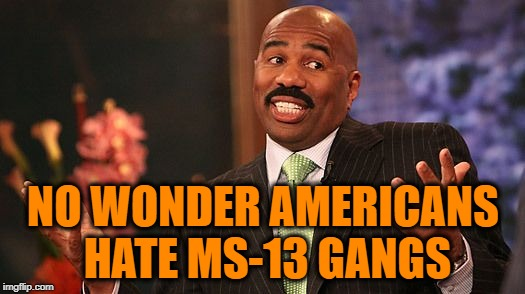 shrug | NO WONDER AMERICANS HATE MS-13 GANGS | image tagged in shrug | made w/ Imgflip meme maker