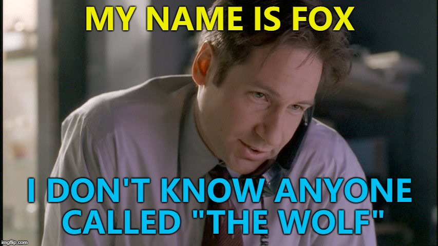 "You're sending The Fox? :) | MY NAME IS FOX I DON'T KNOW ANYONE CALLED ""THE WOLF"" 
