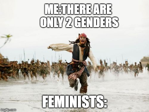 Jack Sparrow Being Chased Meme | ME:THERE ARE ONLY 2 GENDERS FEMINISTS: | image tagged in memes,jack sparrow being chased | made w/ Imgflip meme maker