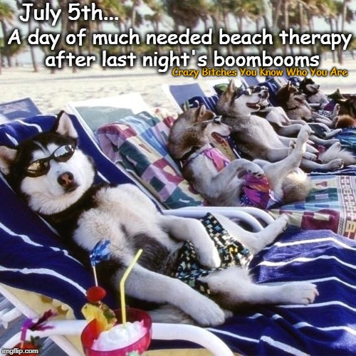 July 5th... Crazy B**ches You Know Who You Are A day of much needed beach therapy after last night's boombooms | image tagged in 4th of july,dogs | made w/ Imgflip meme maker