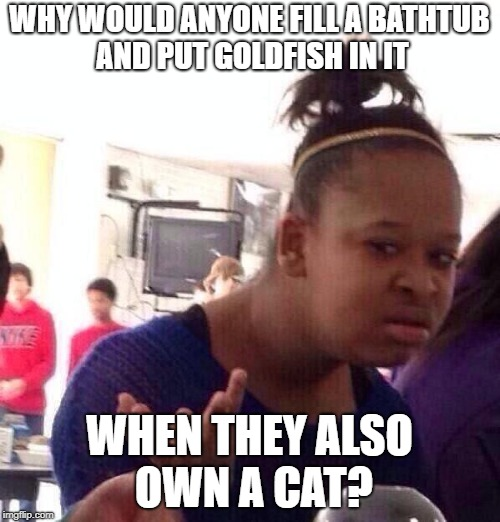 Black Girl Wat Meme | WHY WOULD ANYONE FILL A BATHTUB AND PUT GOLDFISH IN IT WHEN THEY ALSO OWN A CAT? | image tagged in memes,black girl wat | made w/ Imgflip meme maker