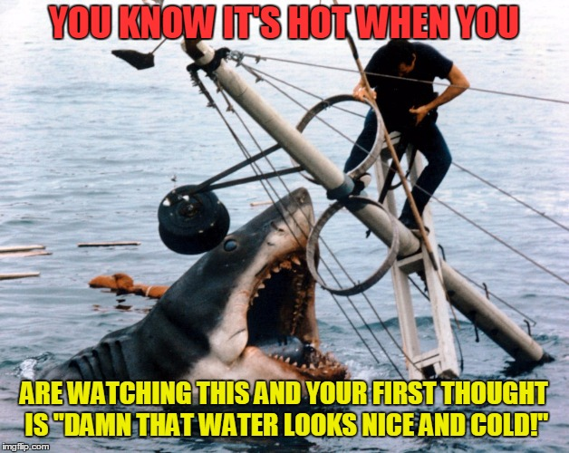 "Jaws | YOU KNOW IT'S HOT WHEN YOU ARE WATCHING THIS AND YOUR FIRST THOUGHT IS ""DAMN THAT WATER LOOKS NICE AND COLD!"" 